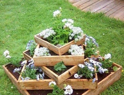 De la maceta al jardín: Cómo trasplantar flores en el exterior